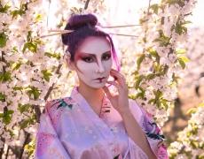 Geisha Sakura Hanami 5