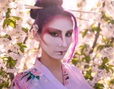 Geisha Sakura Hanami 12
